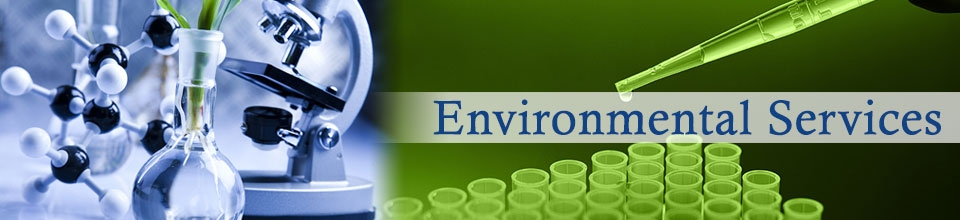 Products : Environmental Services